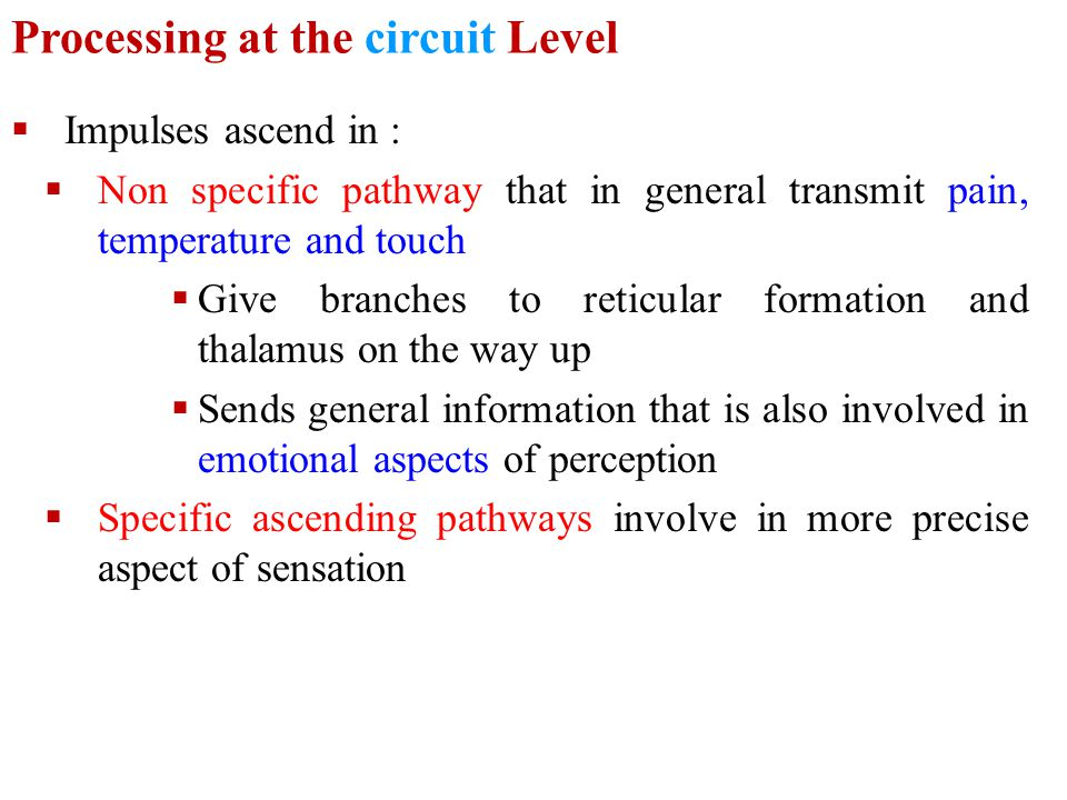 Processing at the circuit Level
