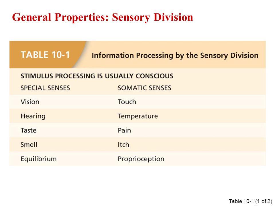 General Properties: Sensory Division