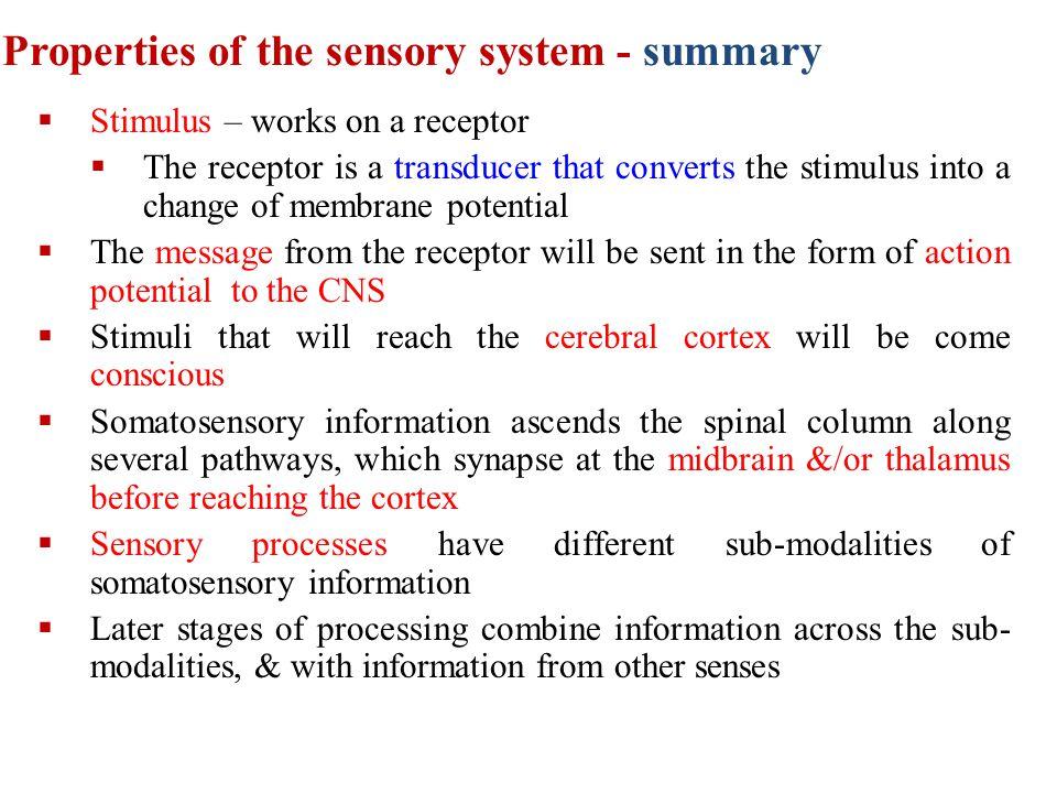 Properties of the sensory system - summary
