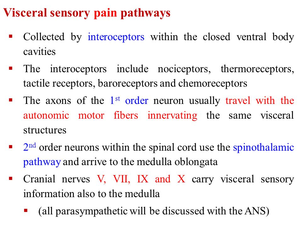 Visceral sensory pain pathways