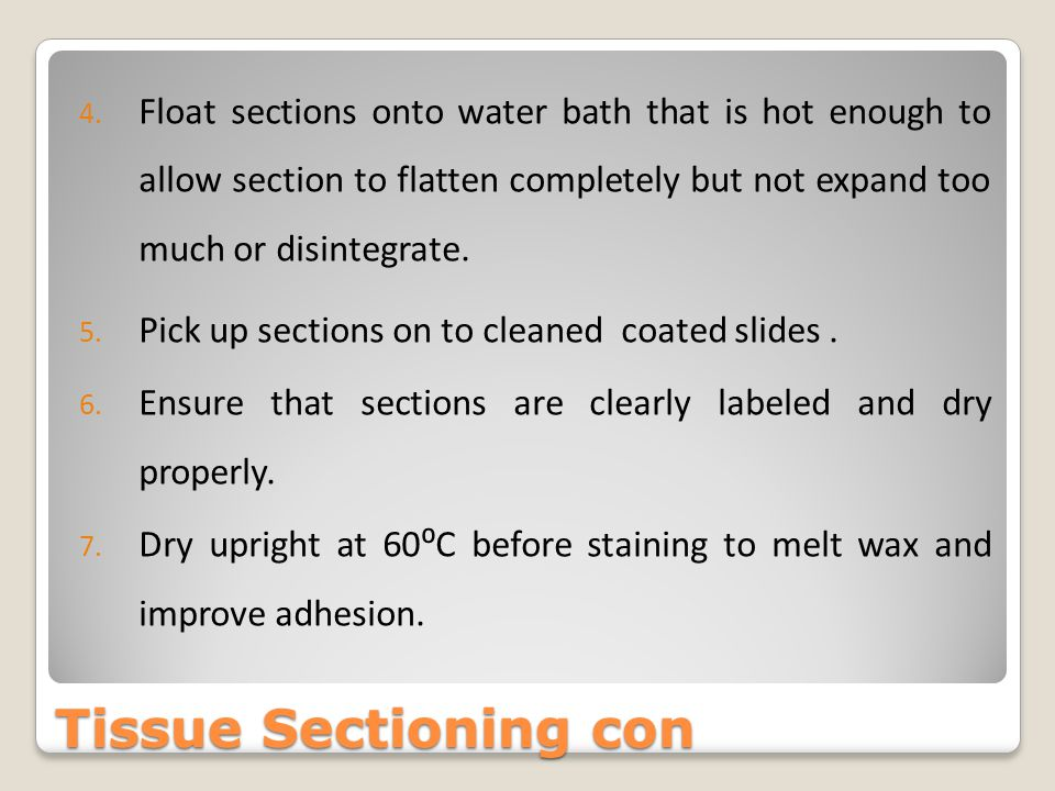 Float sections onto water bath that is hot enough to allow section to flatten completely but not expand too much or disintegrate.