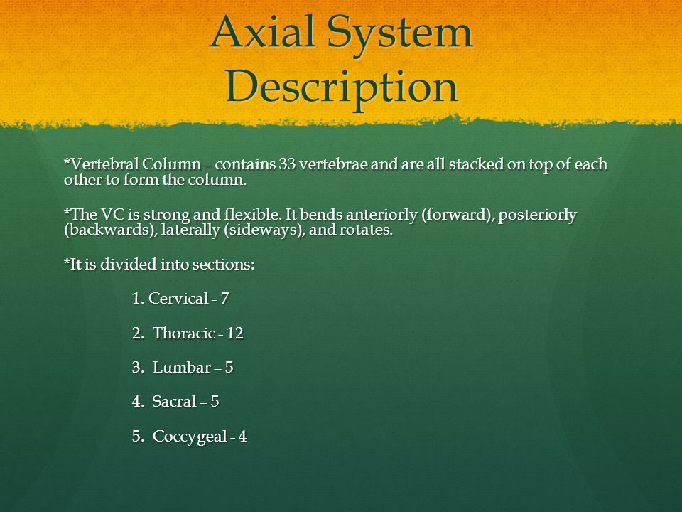 Axial System Description