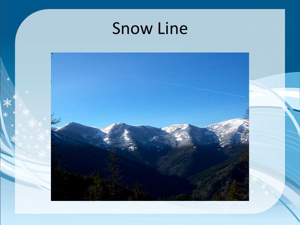 Snow Line