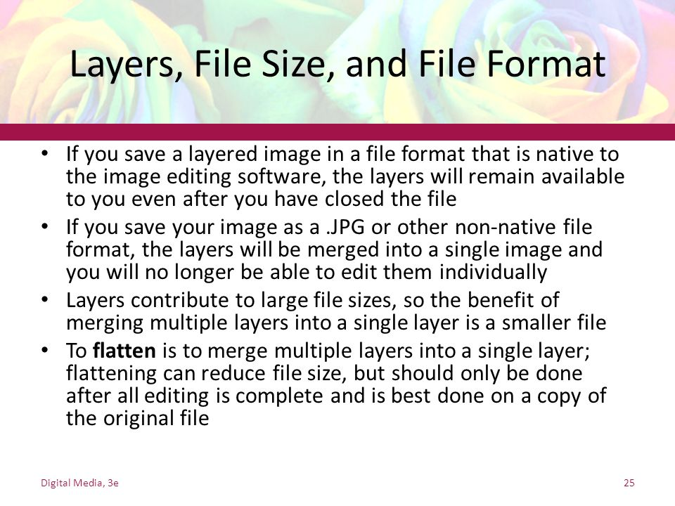 Layers, File Size, and File Format
