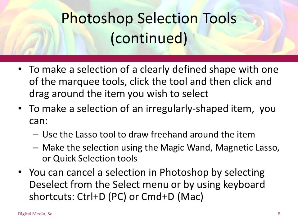 Photoshop Selection Tools (continued)