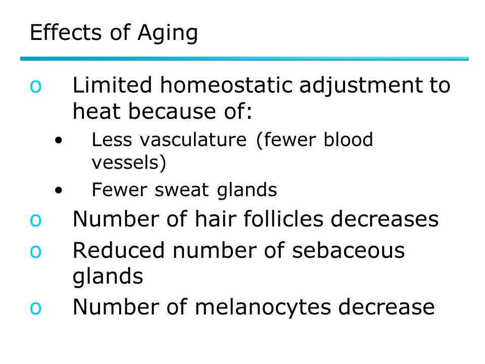 Limited homeostatic adjustment to heat because of: