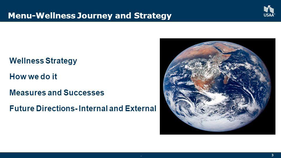Menu-Wellness Journey and Strategy