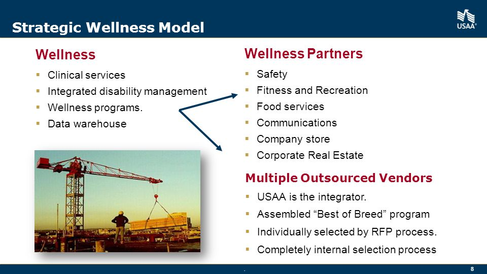 Strategic Wellness Model