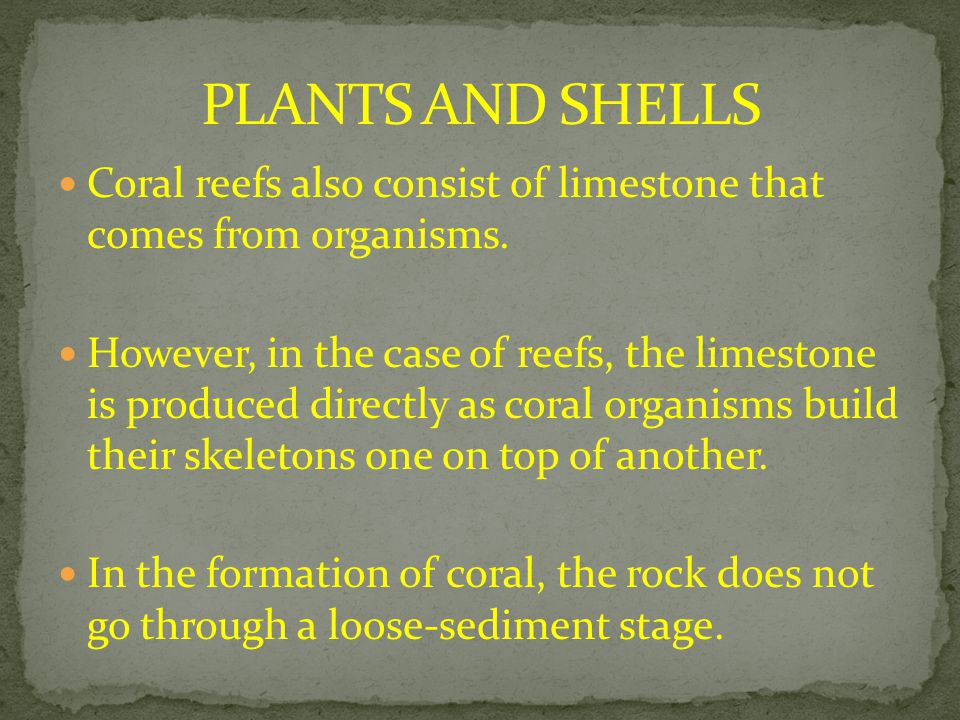 PLANTS AND SHELLS Coral reefs also consist of limestone that comes from organisms.