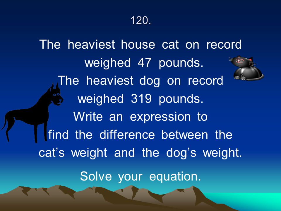 The heaviest house cat on record weighed 47 pounds.