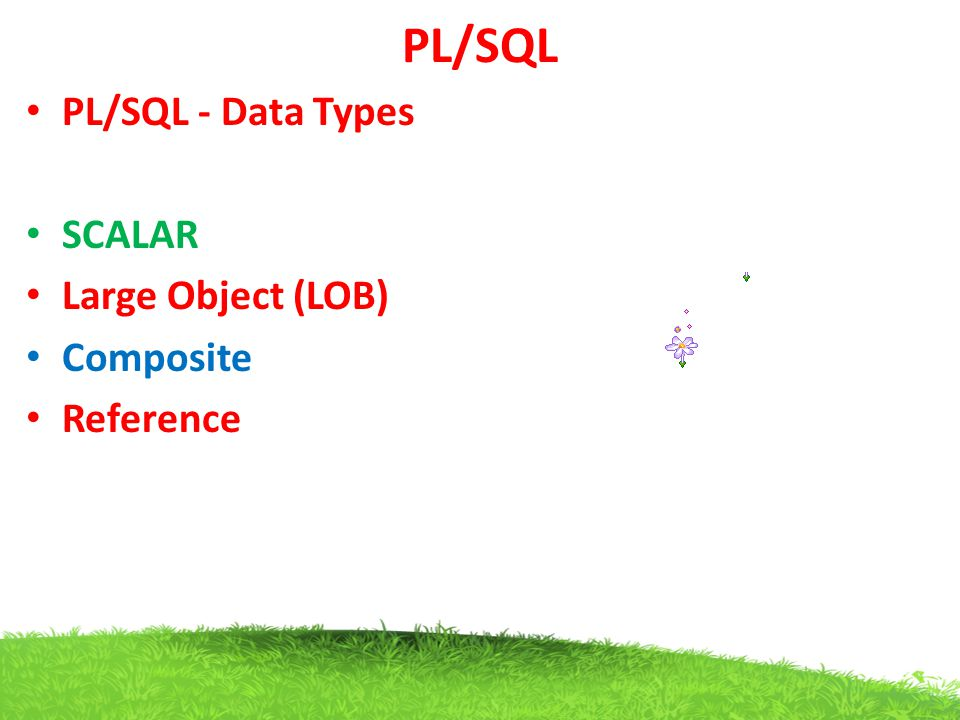PL/SQL PL/SQL - Data Types SCALAR Large Object (LOB) Composite