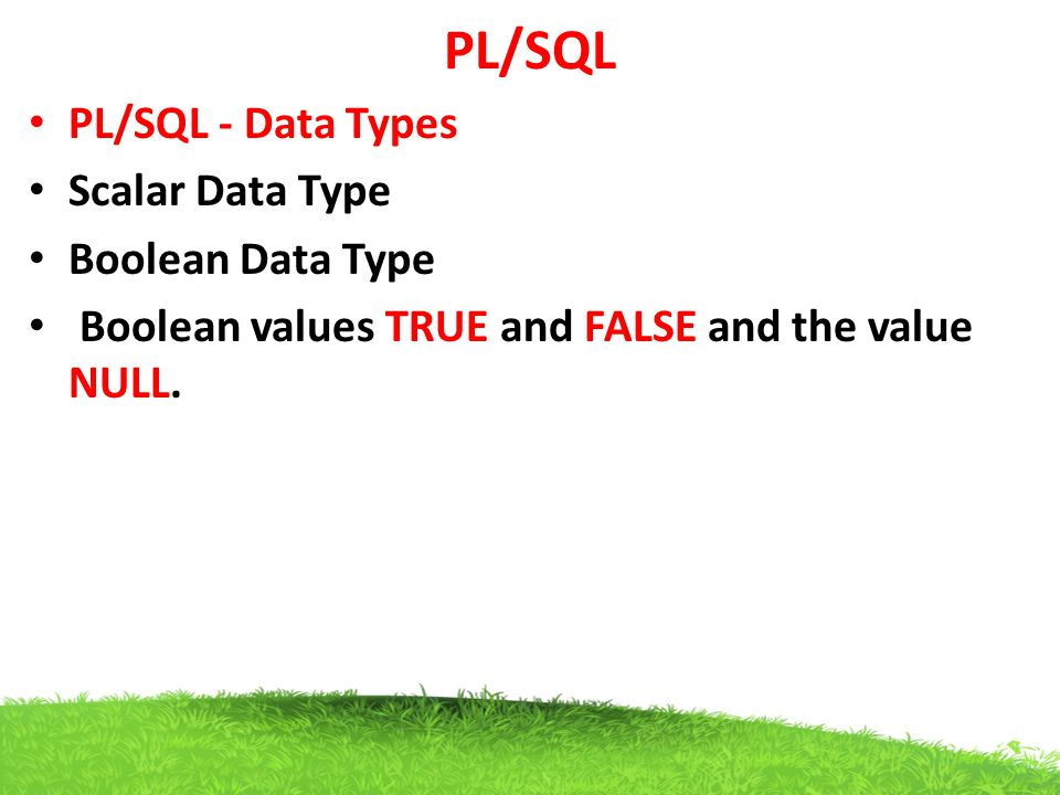 PL/SQL PL/SQL - Data Types Scalar Data Type Boolean Data Type