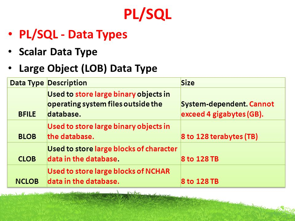 PL/SQL PL/SQL - Data Types Scalar Data Type