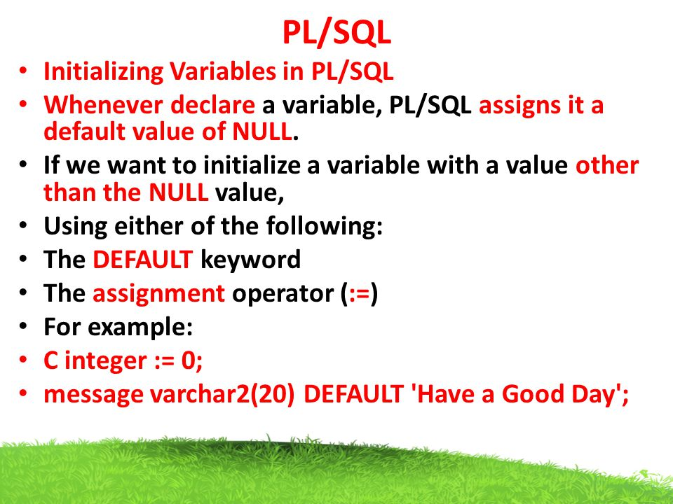 PL/SQL Initializing Variables in PL/SQL