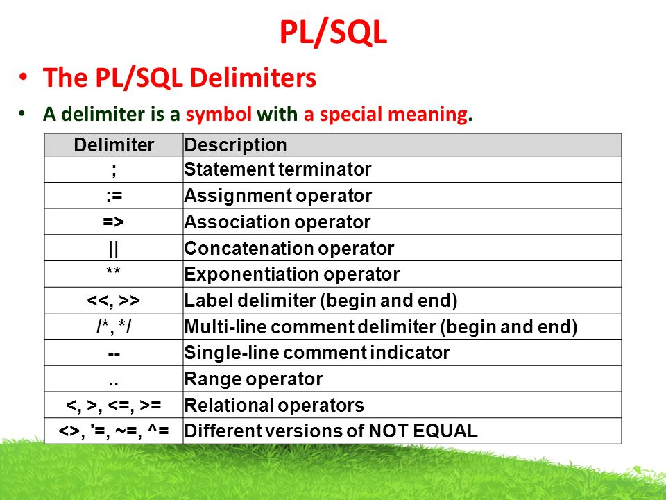PL/SQL The PL/SQL Delimiters