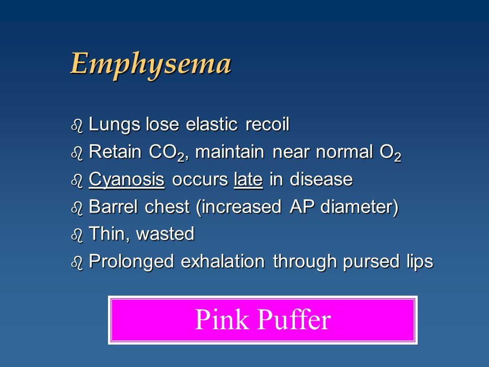 Emphysema Pink Puffer Lungs lose elastic recoil