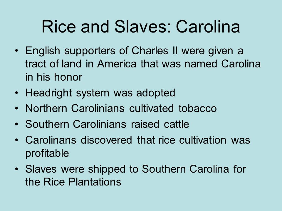 Rice and Slaves: Carolina