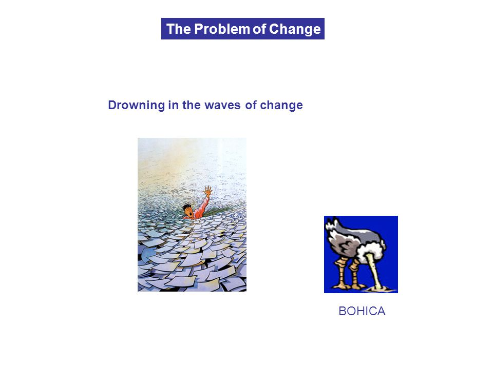The Problem of Change Drowning in the waves of change BOHICA