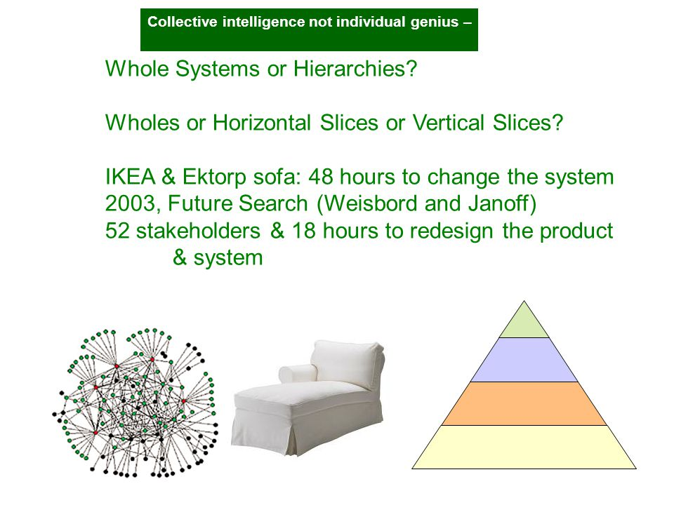 Whole Systems or Hierarchies