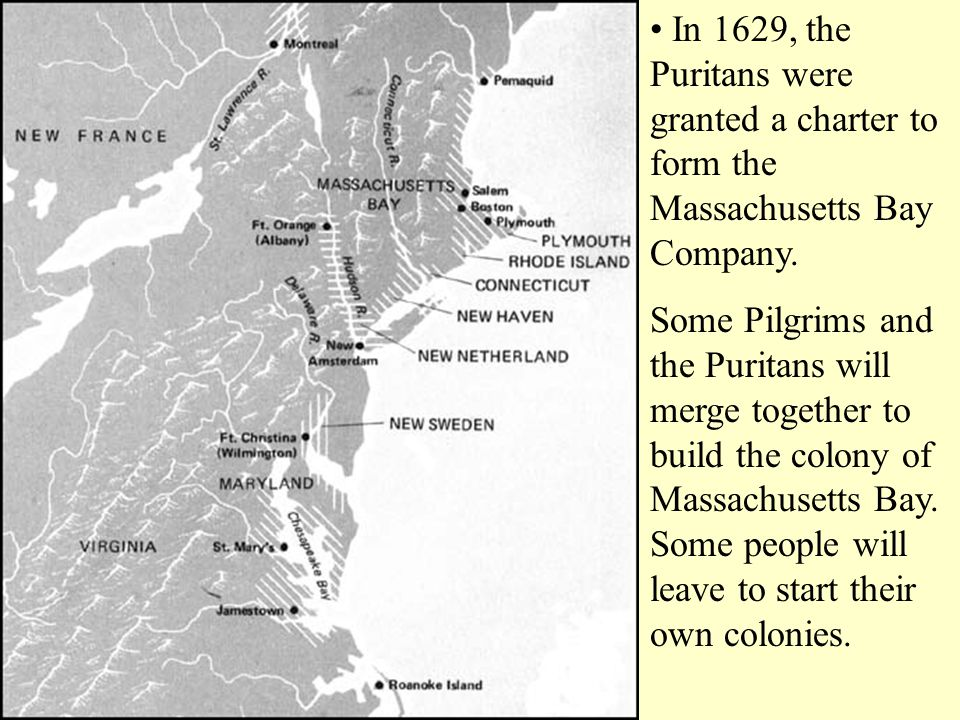 • In 1629, the Puritans were granted a charter to form the Massachusetts Bay Company.