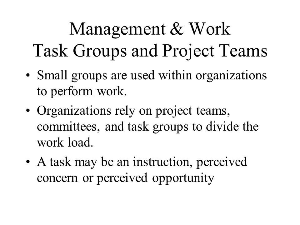 Management & Work Task Groups and Project Teams