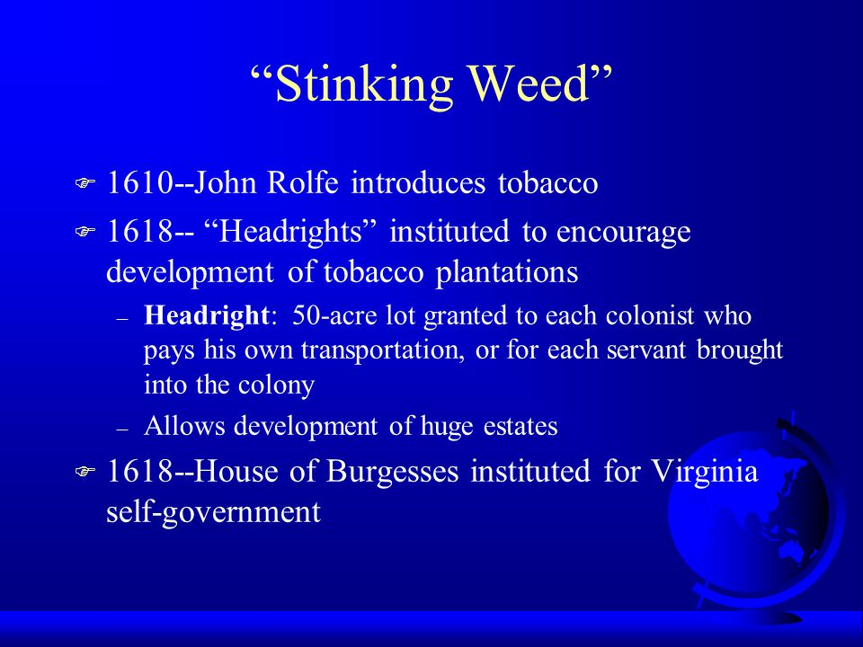 Stinking Weed 1610--John Rolfe introduces tobacco