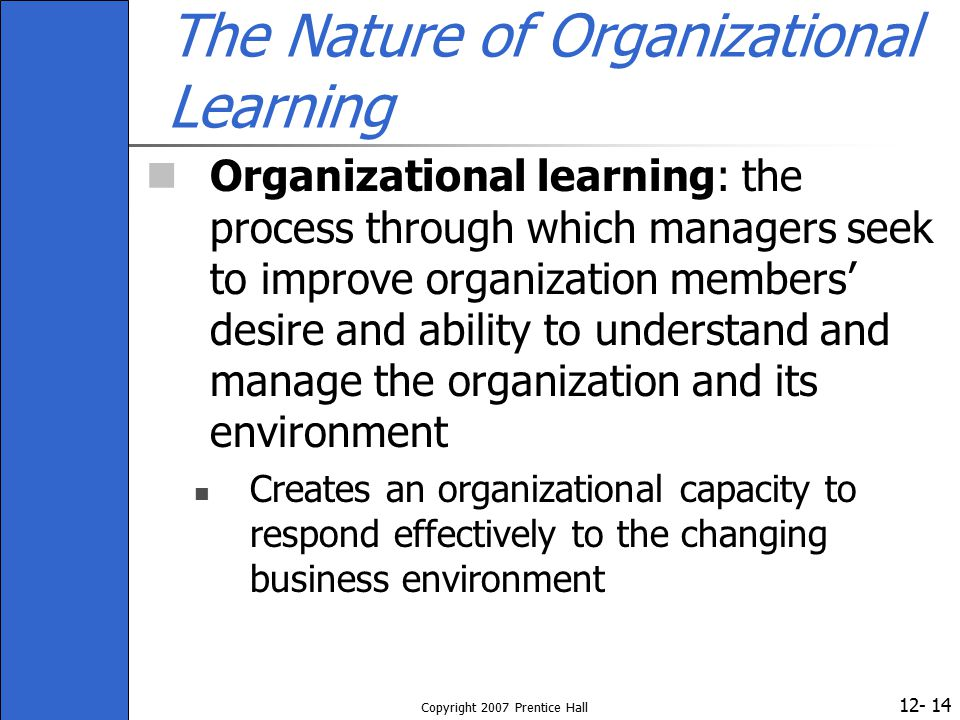 The Nature of Organizational Learning