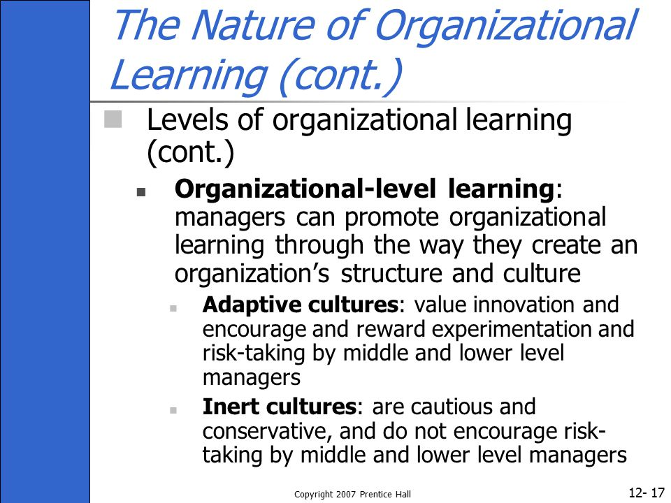 The Nature of Organizational Learning (cont.)