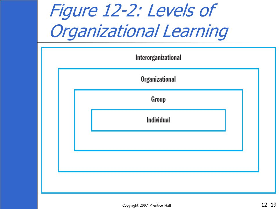 Figure 12-2: Levels of Organizational Learning