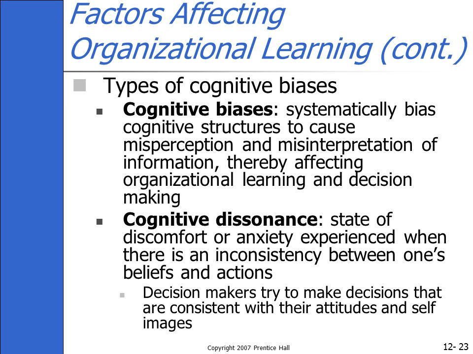 Factors Affecting Organizational Learning (cont.)