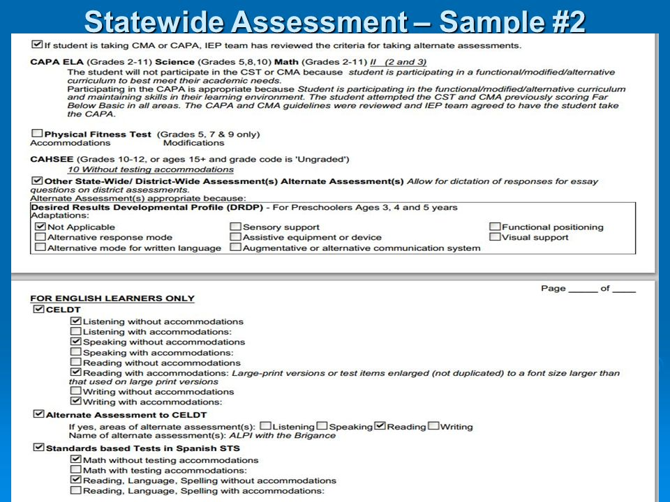 Statewide Assessment – Sample #2