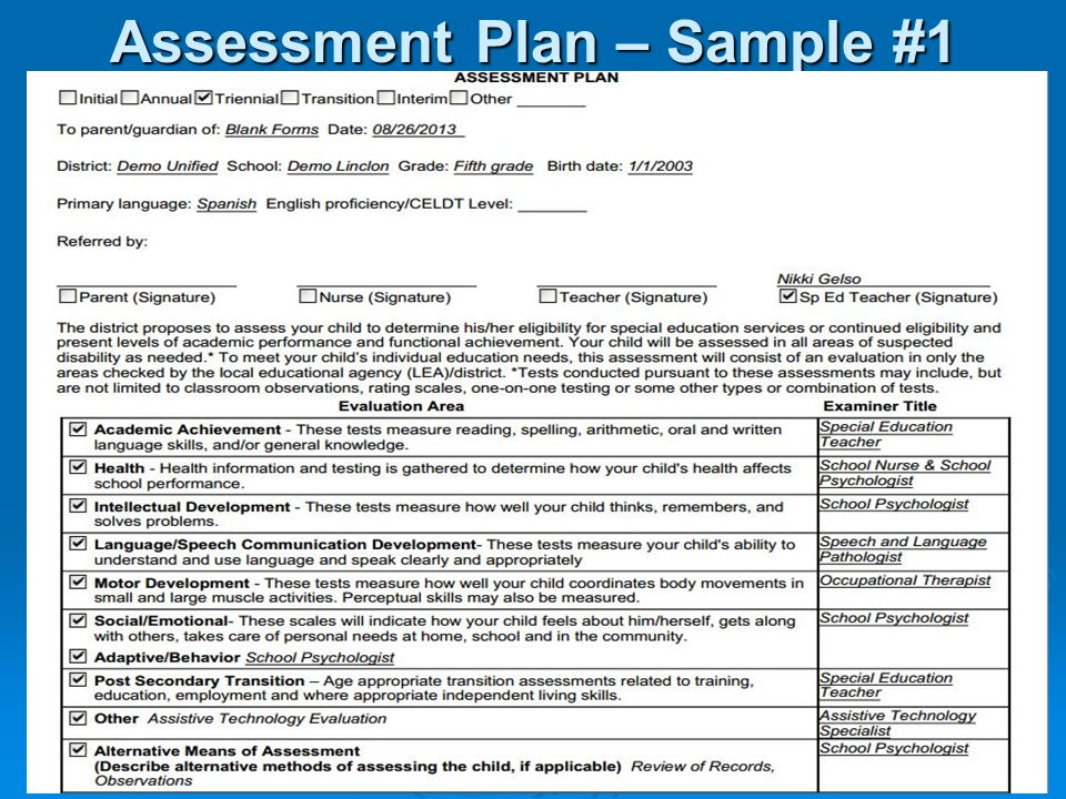 Unusual Assessment Plan Template Images  Example Resume And