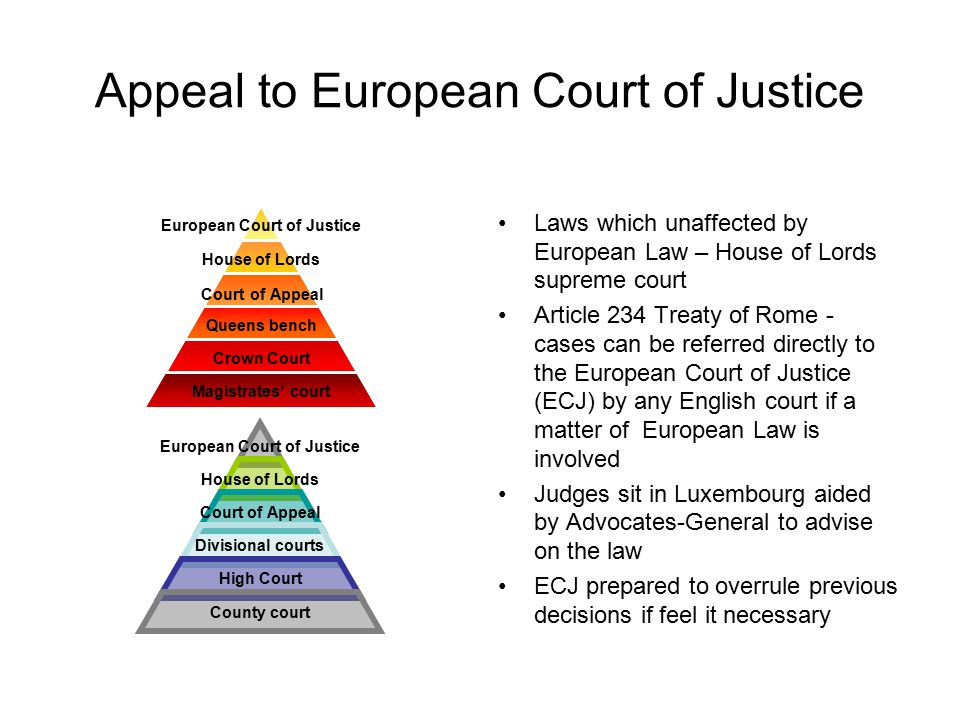 Appeal to European Court of Justice