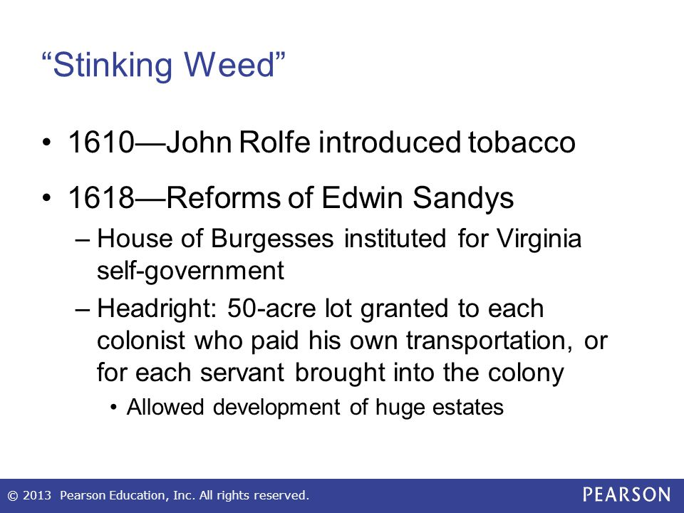 Stinking Weed 1610—John Rolfe introduced tobacco
