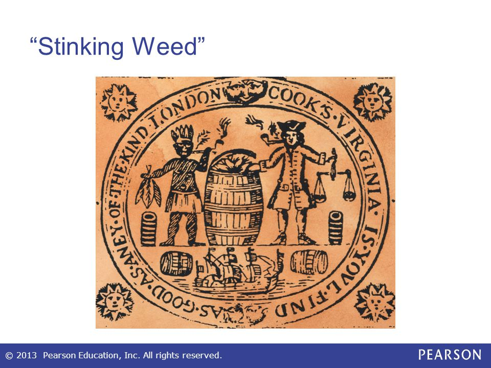 Stinking Weed © 2013 Pearson Education, Inc. All rights reserved.