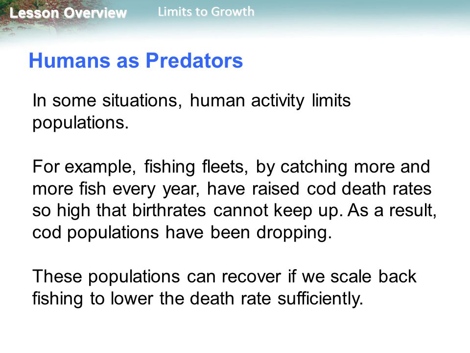 Humans as Predators In some situations, human activity limits populations.