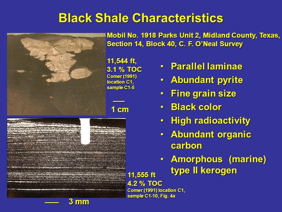 Black Shale Characteristics