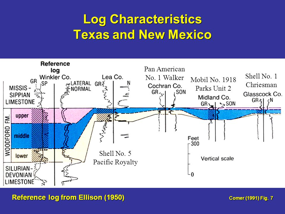 Log Characteristics Texas and New Mexico