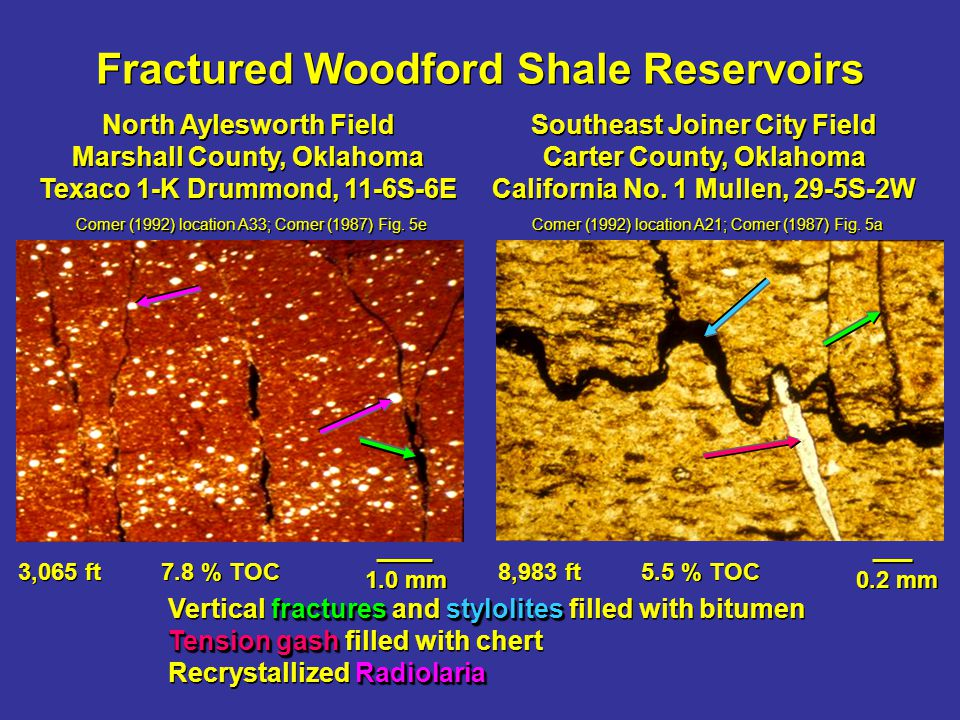Fractured Woodford Shale Reservoirs