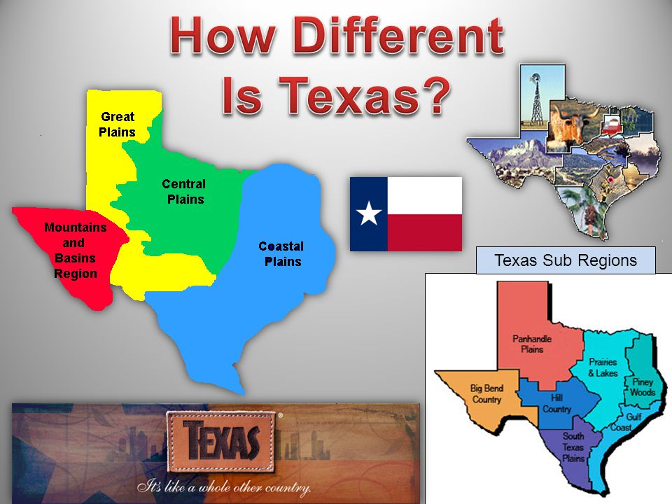 How Different Is Texas Texas Sub Regions