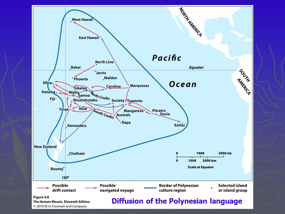 Diffusion of the Polynesian language