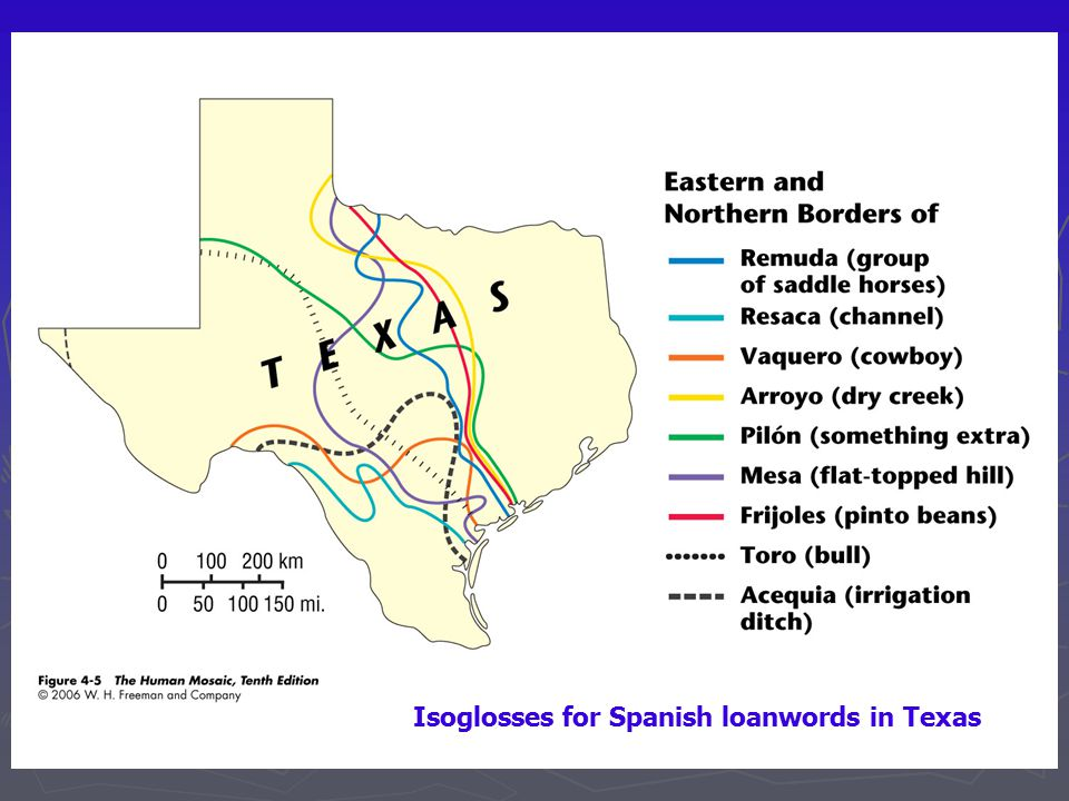 Isoglosses for Spanish loanwords in Texas