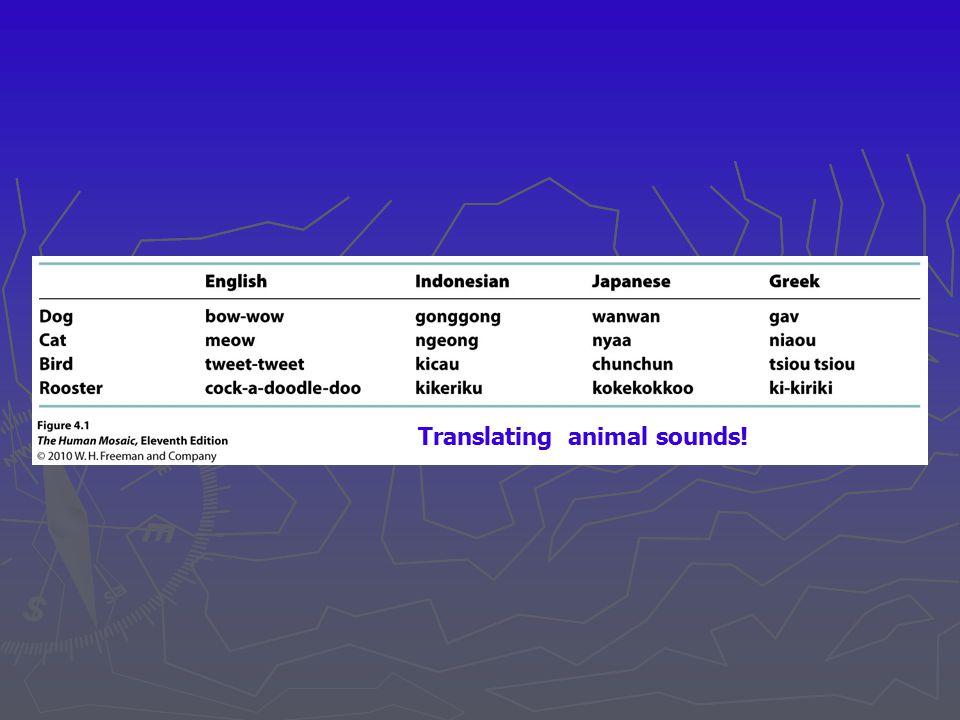 Translating animal sounds!