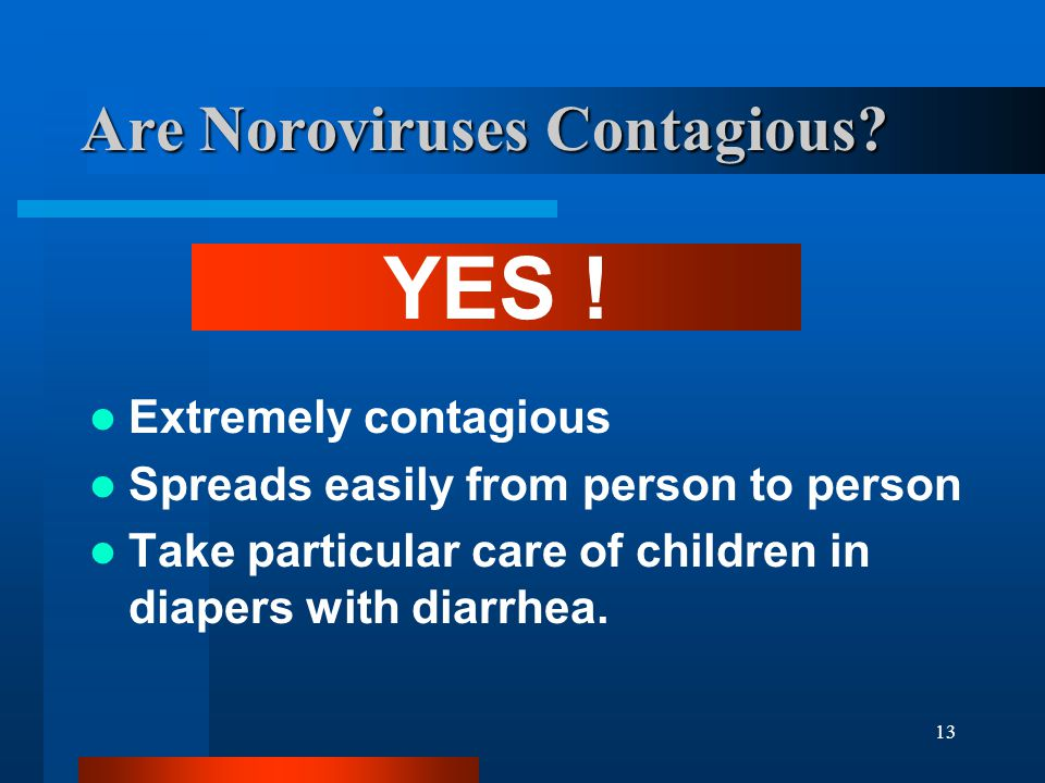 Are Noroviruses Contagious