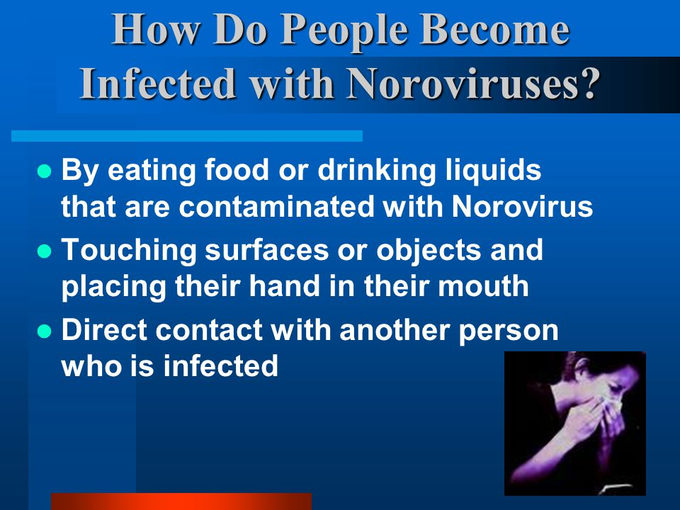 How Do People Become Infected with Noroviruses