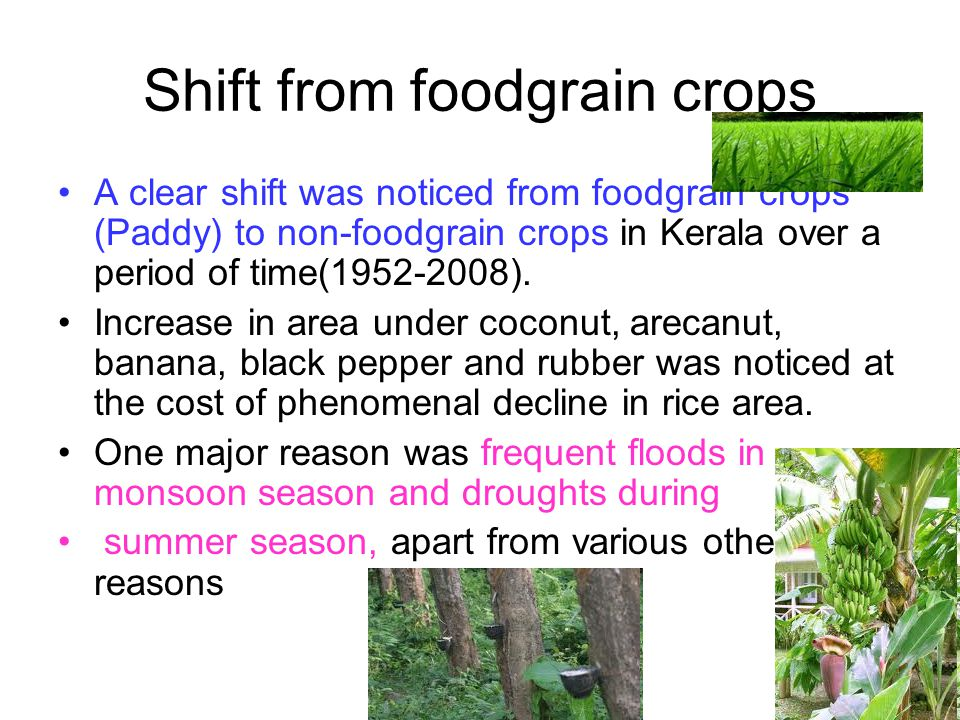 Shift from foodgrain crops