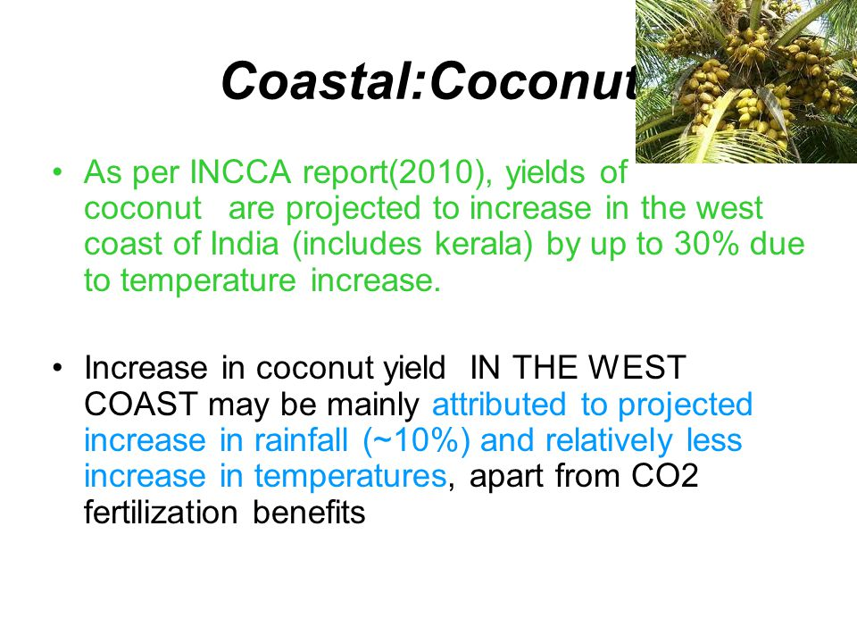 Coastal:Coconut