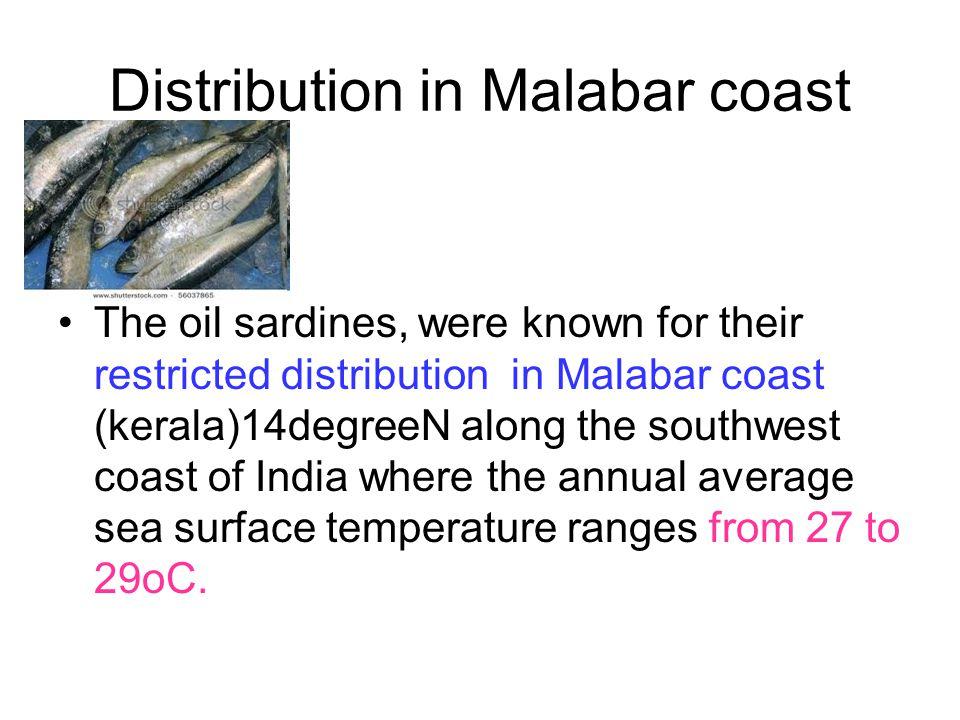 Distribution in Malabar coast