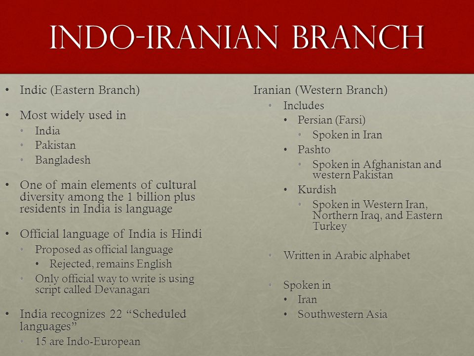 Indo-Iranian Branch Indic (Eastern Branch) Most widely used in