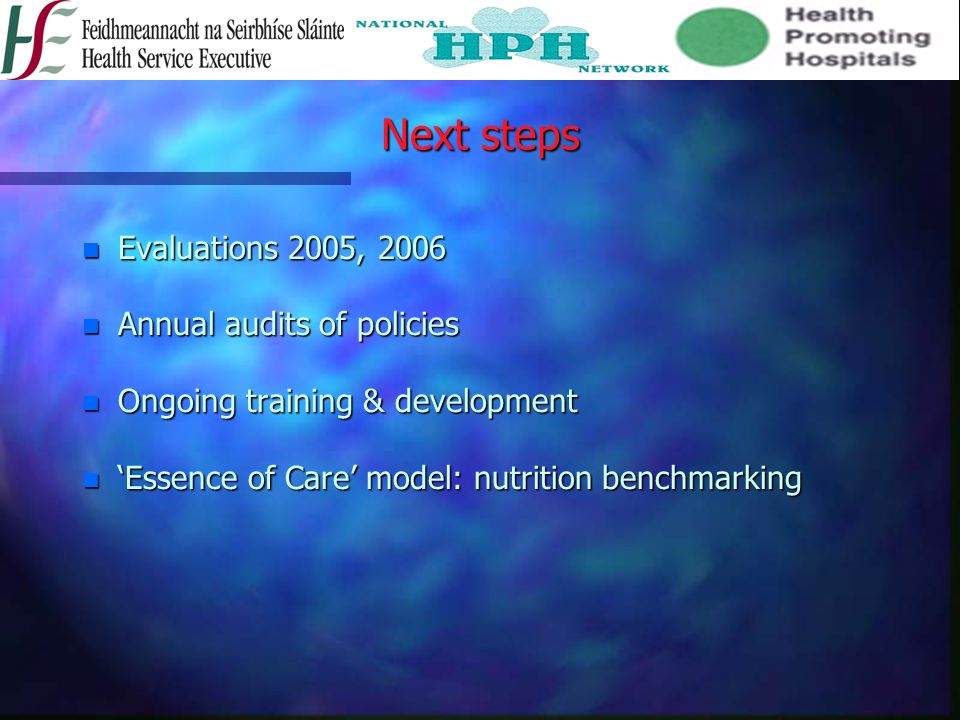 Next steps Evaluations 2005, 2006 Annual audits of policies